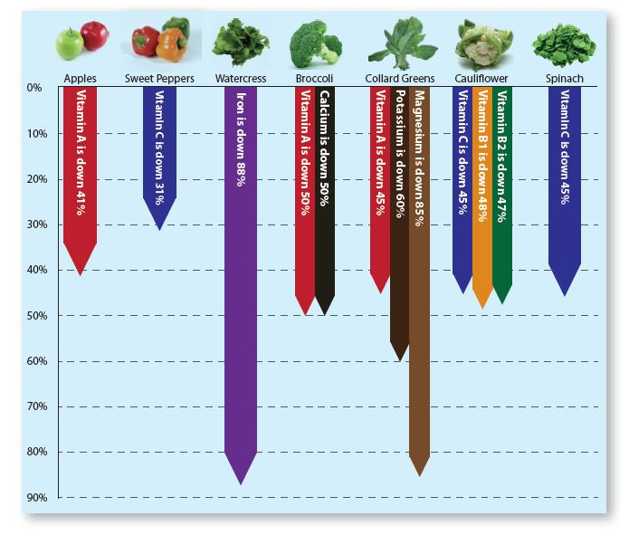 Vegetable fruit chart