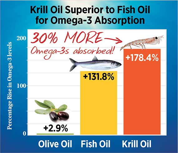 Krill oil vs fish oil with best picture collections for Krill oil versus fish oil