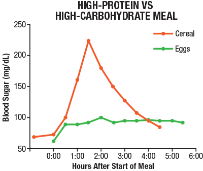 carb vs protein meal